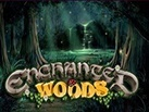 Slot_Enchanted_Woods_137х103