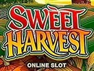 Slot_Sweet_Harvest_137x103